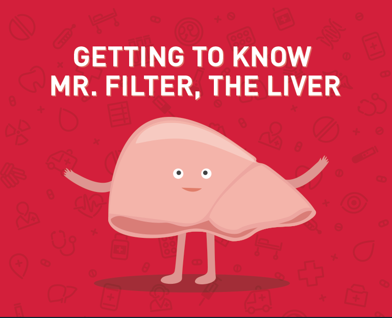 Getting to Know Mr Liver, the Liver