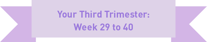 Your third trimester